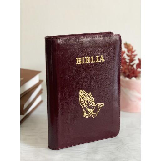 Biblie medie 053 PFR visinie