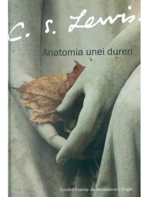 Anatomia unei dureri