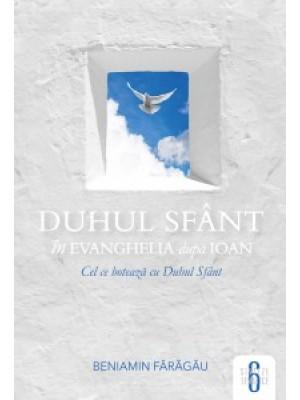 Duhul Sfant in Evanghelia dupa Ioan - Sinteze tematice vol.6