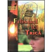 Felinarul lui Trica