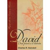 David - omul pasiunii si al destinului
