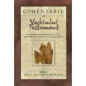 Comentariu al Vechiului Testament