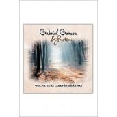 CD Gabriel Gorcea si Prietenii - Ce-ai lasat in urma ta?, Vol.10