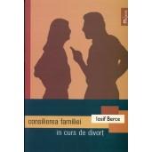 Consilierea familiei in curs de divort