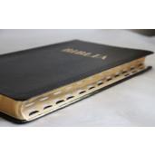 Biblie mare 087 TI