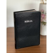 Biblia literala