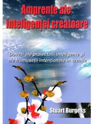 Amprente ale inteligentei creatoare