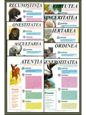 Manualul profesorului pentru gradinita si clasele primare - 9 reviste