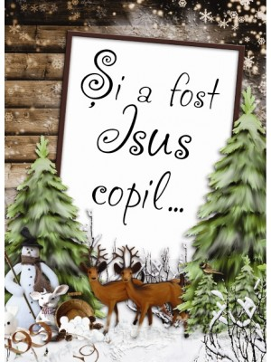 Si a fost Isus copil