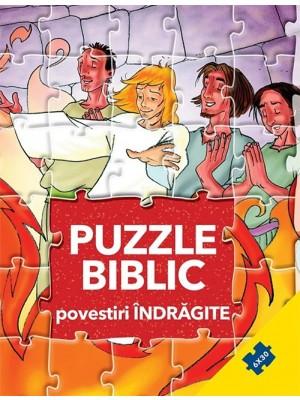 Puzzle biblic. Povestiri indragite
