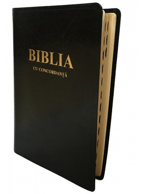 Biblie mare CO 087 TI