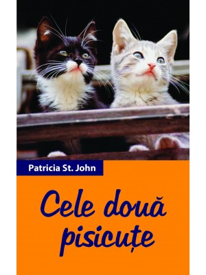 Cele două pisicuțe